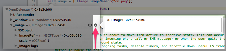 xcode5_debug_new_feature_18