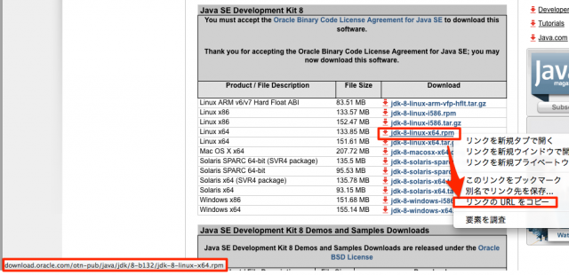 install-oracle-jdk-06