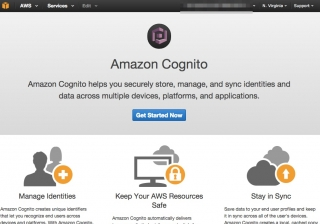 aws_cognito_stream_try_01
