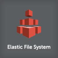 Elastic File System
