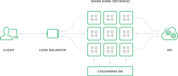 kong-detailed