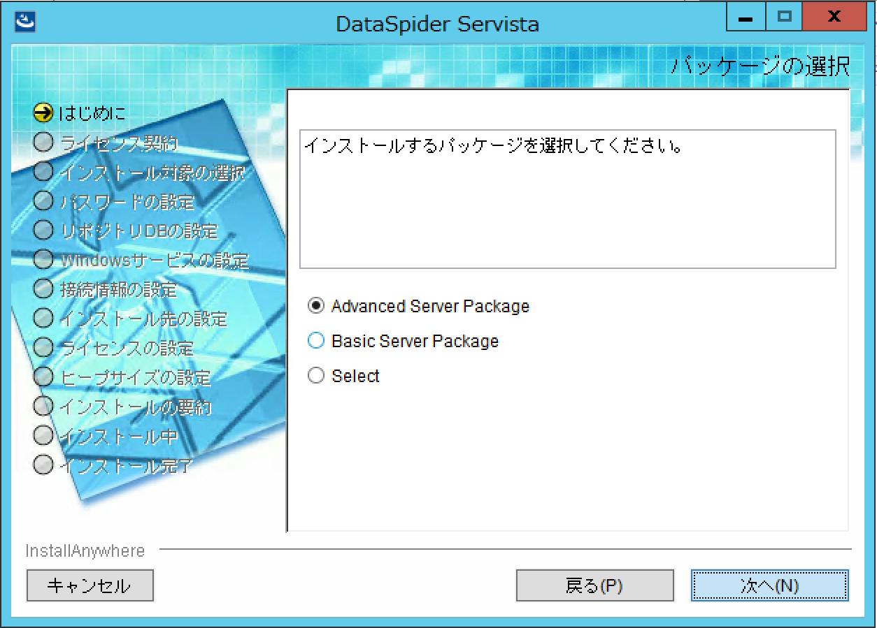 dataspider-servista-install_05