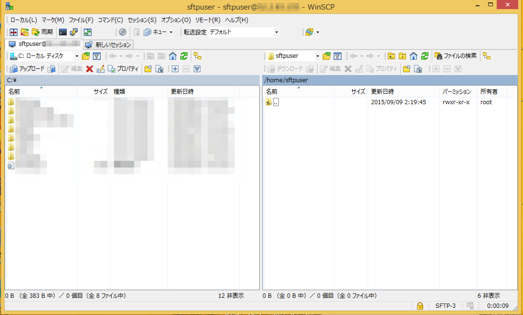 sftp-server-ssh-login_12