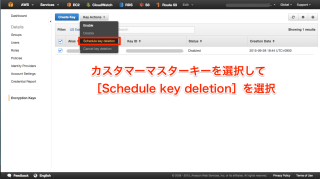 Schedule key deletionを選択