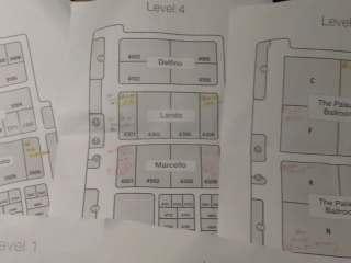 地図(拡大)