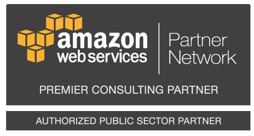 Public_Sector_Prem-Consulting-Partner_Dark_Medium