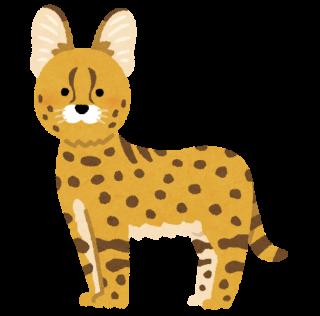 animal_serval