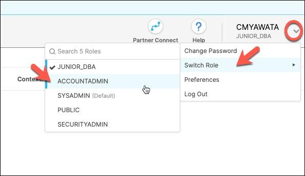 switch to accountadmin role