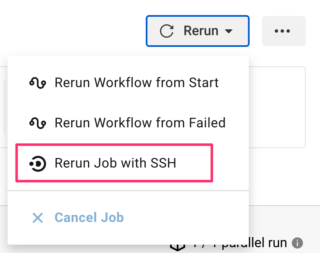Rerun Job with SSHを選択する様子