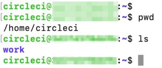CircleCIのJobにSSH接続した様子